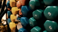 Dumbbells in different colors and different weights to the rack in a gym video