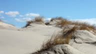 Dune Landscape video