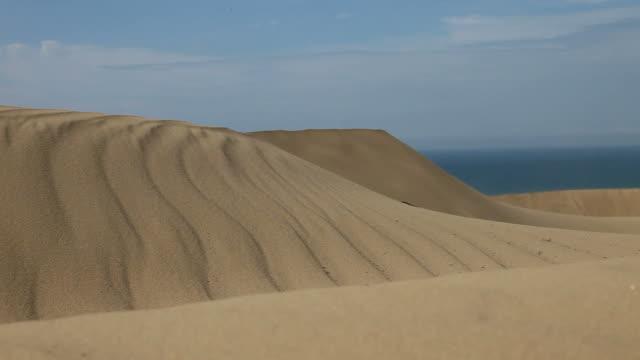 dune video