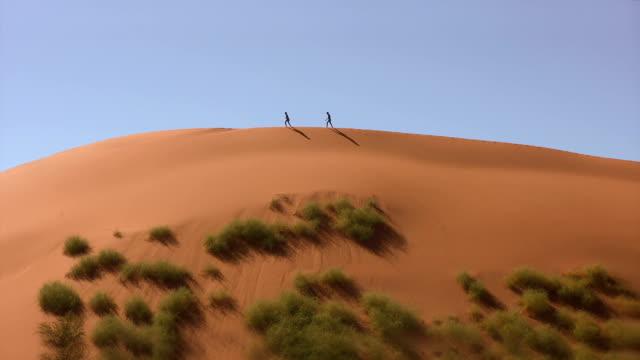 Dune_Namib 4 video