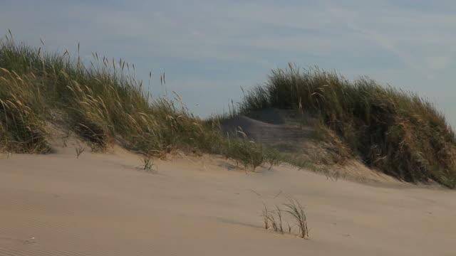 dunes video