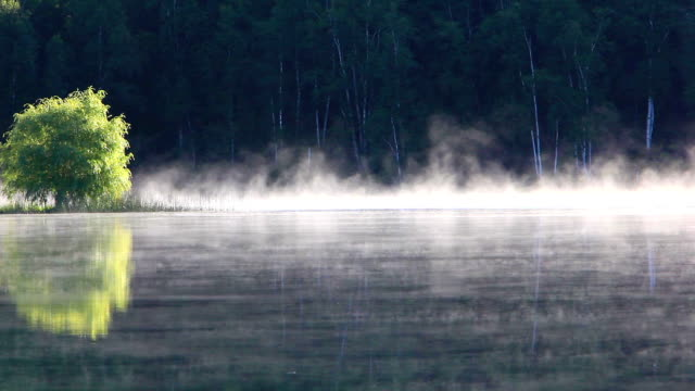 Early morning mist rising from lake surface video