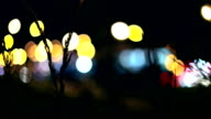 Ears of corn, Passing Tramway, Lights video