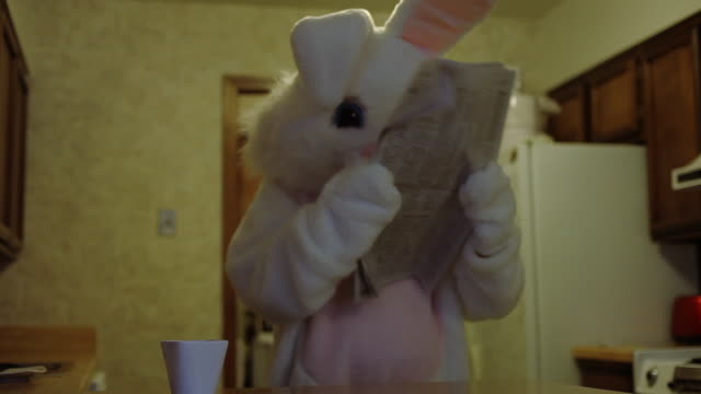 Easter bunny reads newspaper video
