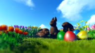 Easter Eggs and Chocolate Bunnies on green meadow with colorful tulips video