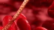 Ebola Virus under a Microscope HD // Medical 3D Visualization video