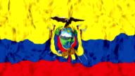Ecuador Flag video
