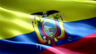 Ecuador national flag. (New surge and lighting effect) video