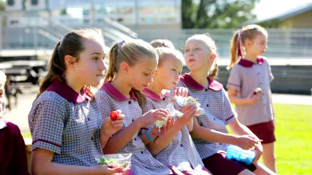 Education Children Eating Healthy Lunch at School video