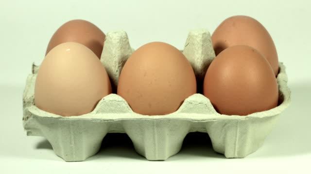 Eggs in carton, HD video