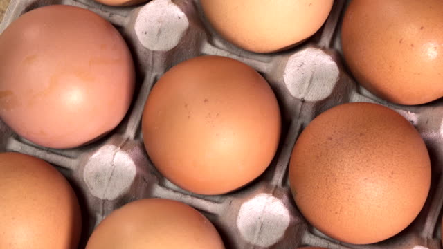 Eggs lie in the cardboard support video