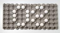 Eggs Numbers Countdown video