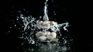 Eggs on a tray, slow motion water video