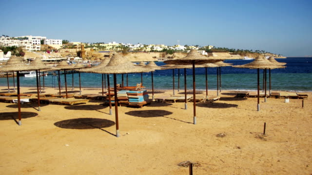 Egypt, Empty Sunny Beach with Umbrellas, Sun Beds on the Red Sea video