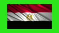Egypt flag waving,loopable on green screen video