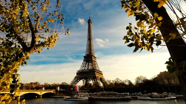 Eiffel Tower in Paris With Trees video