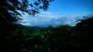 El Yunque National Forest Puerto Rico video