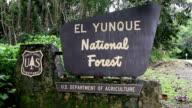 El Yunque Rain Forest Entrance video