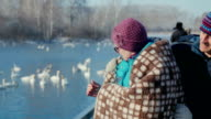 Elderly couple embracing in the background of the lake with swans video