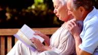 Elderly couple reading a book video