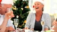 Elderly friends celebrating video