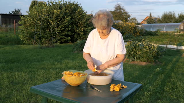 Elderly woman 80s cleans chanterelle mushrooms video