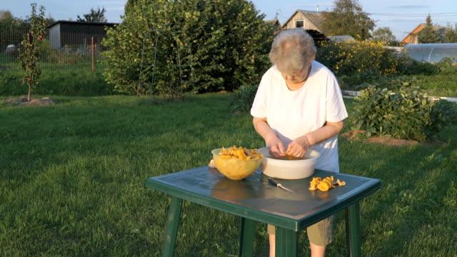 Elderly woman separates chanterelle mushrooms video