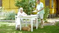 Elderly woman sitting in the garden. video