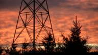 Electrical pylon & tree at sunset. video