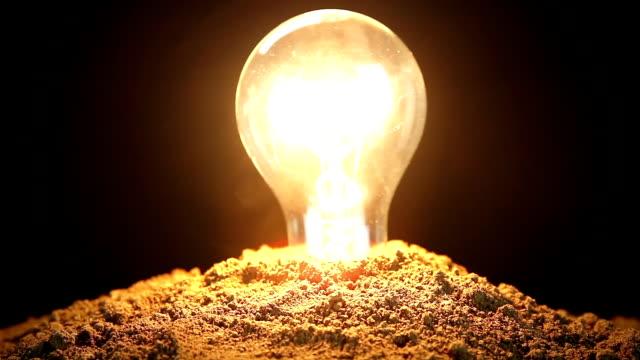 Electricity Energy Nature Light Bulb Soil Ecology video