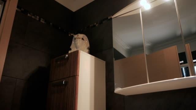 Elegant design of the modern bathroom video
