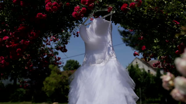 Elegant wedding dress hanging from flowering branch video