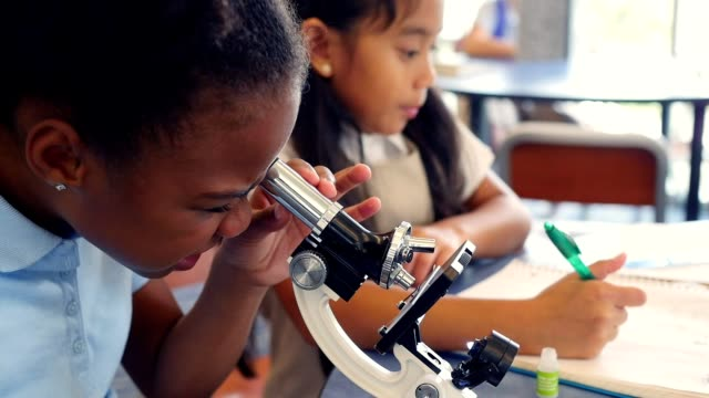 Elementary STEM school girls work together on science project video