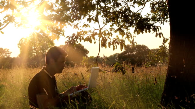 Emailing Under Sunbeams video