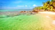 Empty paradise beach video