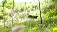 LS DS Empty Swings In The Wind video