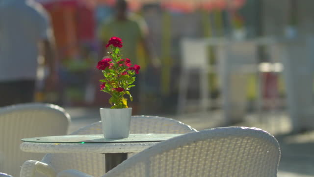 Empty table with flower in street cafe video