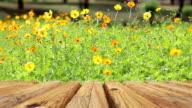 Empty wooden table with flower for background video