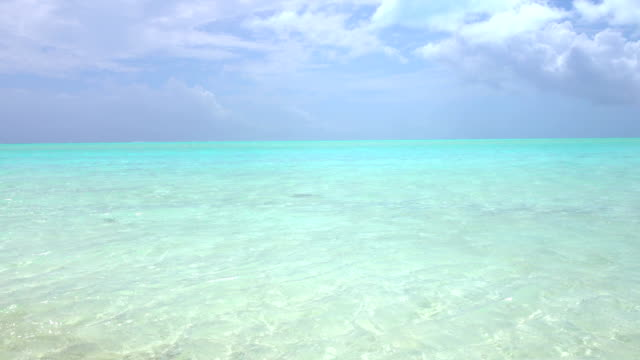 Endless blue lagoon with crystal clear ocean water on sunny tropical island video