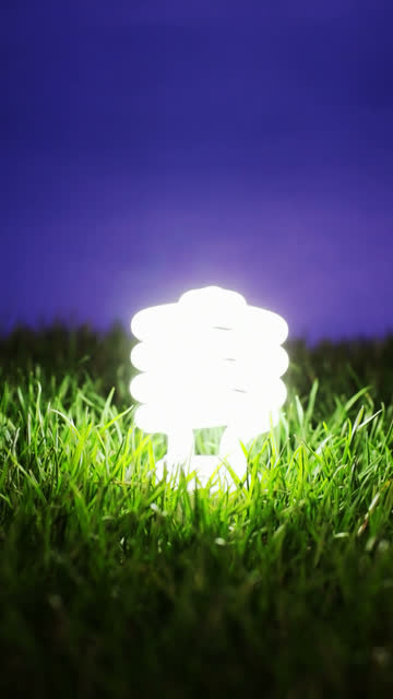 Energy saving light bulb, vertical video