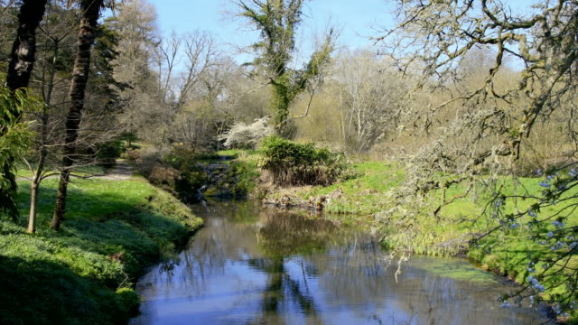 English country river at spring time video