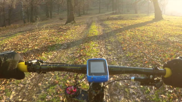 POV Enjoy cycling in a sunny autumn day. video