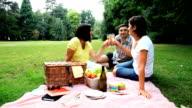 Enjoying picnic in the park video