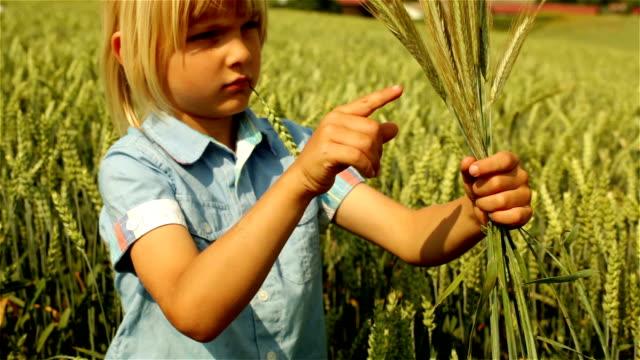Environmental Portrait of Rural Boy in a Wheat Field video