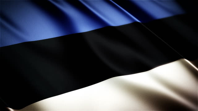 Estonia realistic national flag seamless looped waving animation video