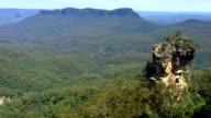 Eucalyptus Gum Tree Forest Blue Mountains Australia video