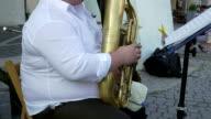 Euphonium Musician Plays Outdoor video
