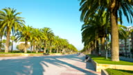 Europe, palm trees promenade, sunny summer day video