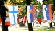 European Flags On A Rope video