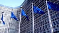 European Union Flags video